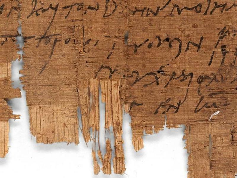 Papyrus - Foto: Universität Basel
