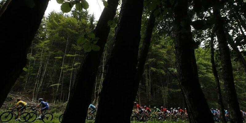Tour de France - Foto: Die Fahrer haben bei der siebten Etappe der Tour von Belfort nach Chalon-sur-Saône 230 Kilometer zu überwinden. Foto:Christophe Ena/AP