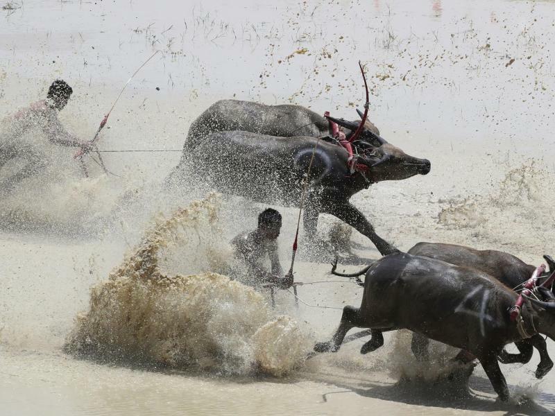 Durch den Schlamm - Foto: Sakchai Lalit/AP