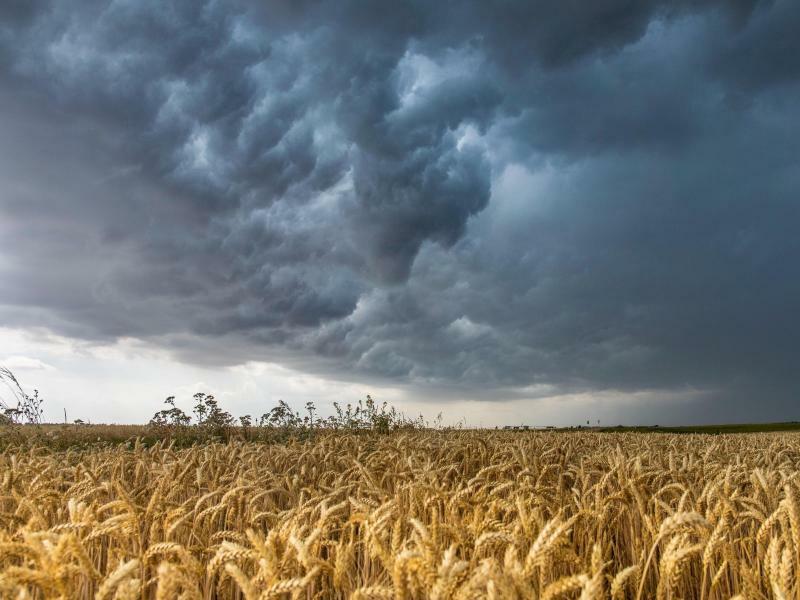 Unwetterfront bei Großenhain - Foto: Bernd März