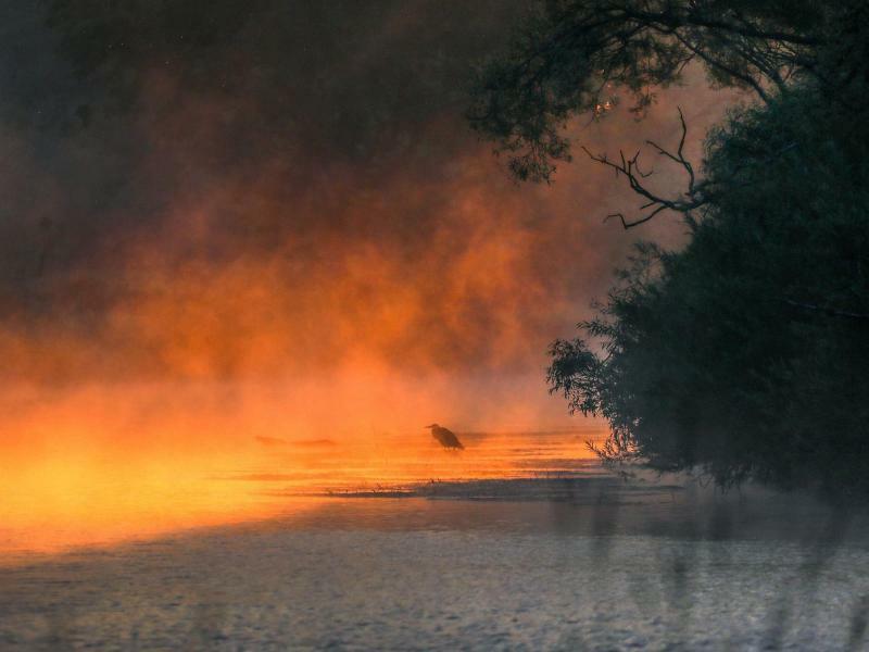 Sonnenaufgang - Foto: Thomas Warnack