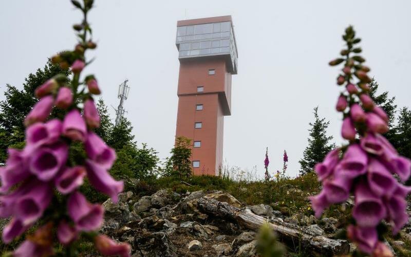 Turm auf dem Wurmberg - Foto: Christophe Gateau