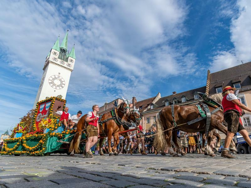 Pferde-Parade - Foto: Armin Weigel