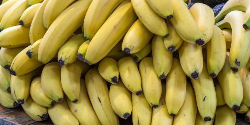 Bananen - Foto: Jens Büttner
