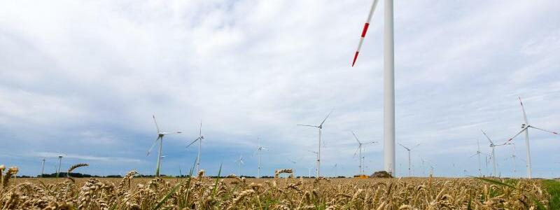 Windräder in Nordfriesland - Foto: Frank Molter