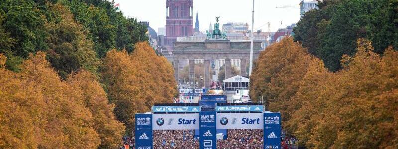 Berlin-Marathon - Foto: Soeren Stache