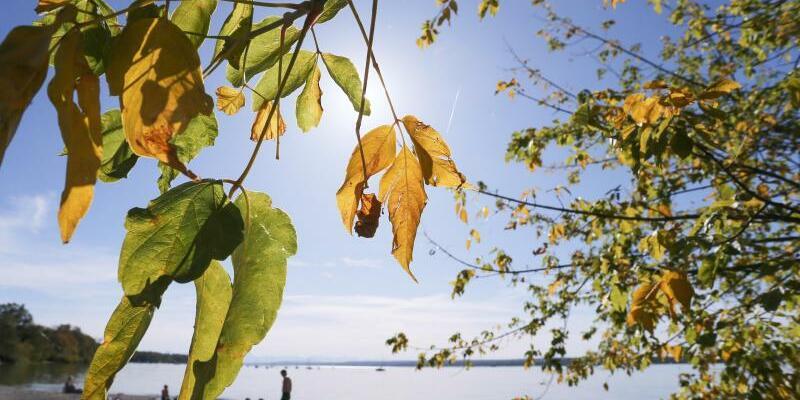Goldener Oktober - Foto: Karl-Josef Hildenbrand/dpa