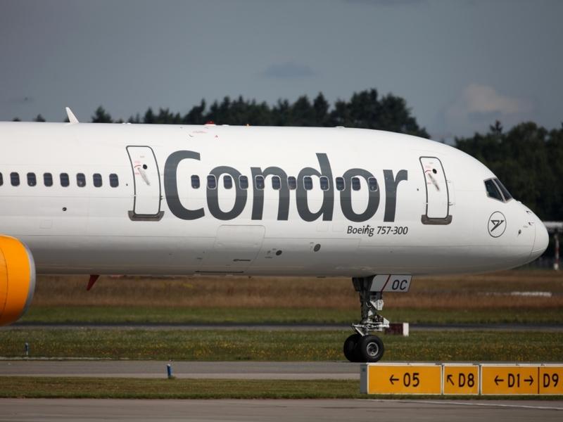 Condor - Foto: über dts Nachrichtenagentur