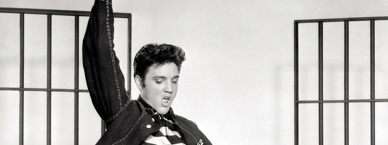 Elvis Presley  - Foto: Pixabay