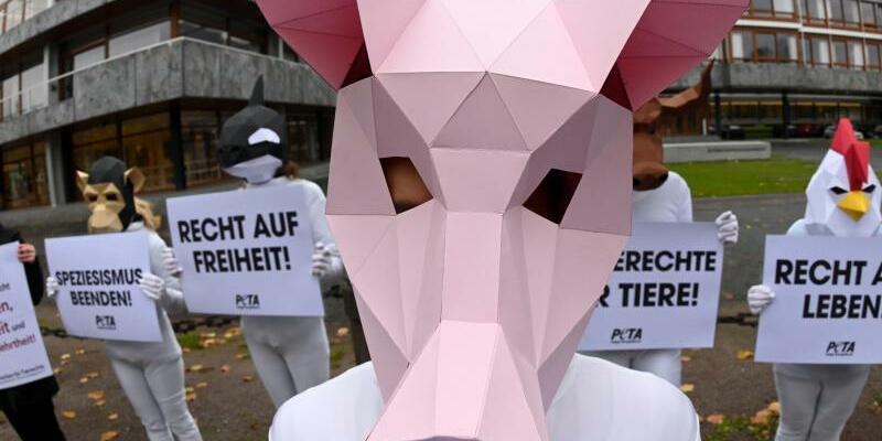 Peta-Protest - Foto: Uli Deck/dpa