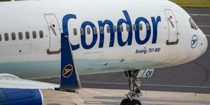 Condor - Foto: Marcel Kusch/dpa