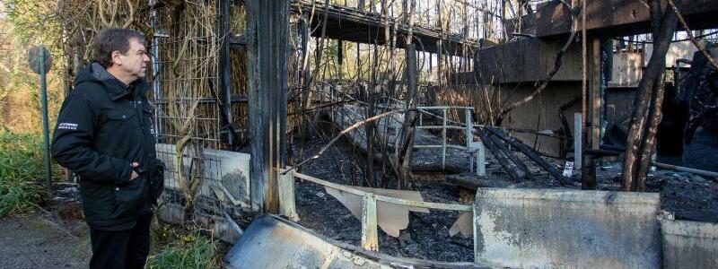 Überreste des Affenhauses - Foto: Christoph Reichwein/dpa