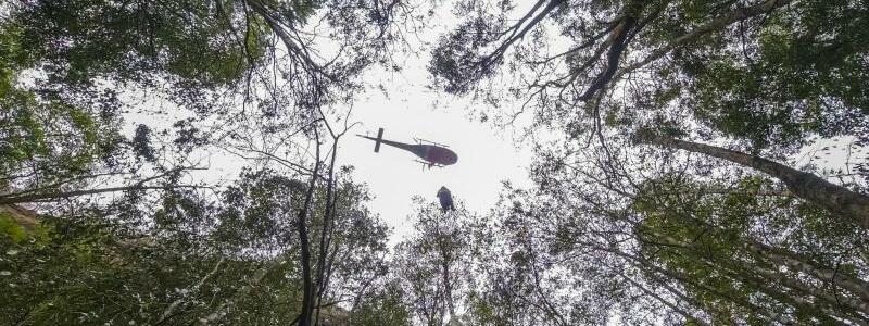 Einsatz über dem Wald - Foto: Npws/NPWS/AAP/dpa