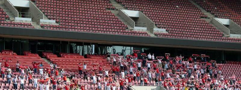 1. FC K?ln - Foto: Federico Gambarini/dpa