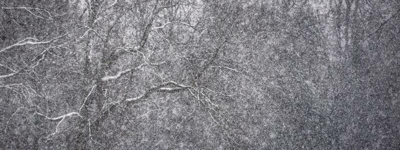 Schneelandschaft - Foto: Frank Rumpenhorst/dpa