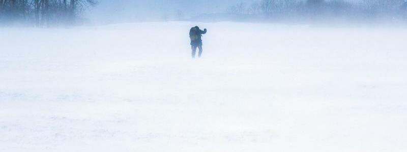 Allein im Schnee - Foto: Jens B?ttner/dpa-Zentralbild/dpa