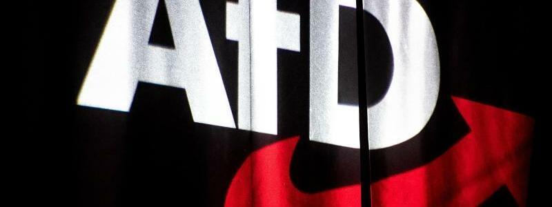 Die AfD verliert viele Mitglieder - Foto: Sina Schuldt/dpa/Symbolbild/Archiv