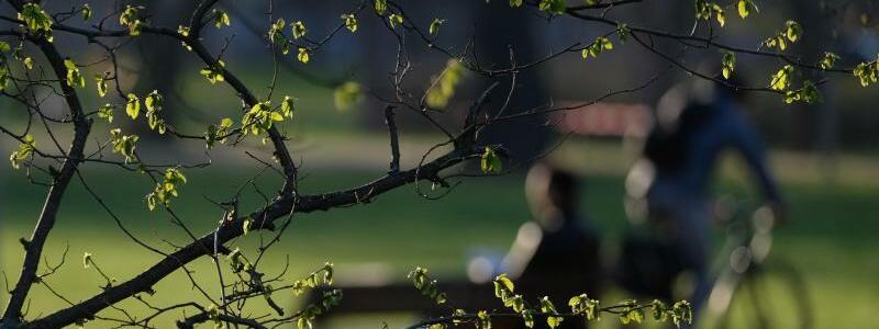 Wechselhaftes Osterwetter - Foto: Sebastian Willnow/dpa-Zentralbild/dpa