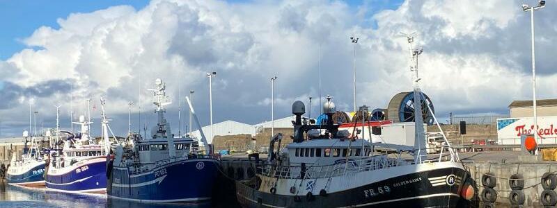 Schottlands Fischer sauer auf London - Foto: Benedikt von Imhoff/dpa