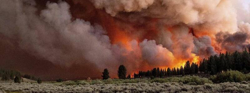 Waldbr?nde in Kalifornien - Foto: Noah Berger/AP/dpa