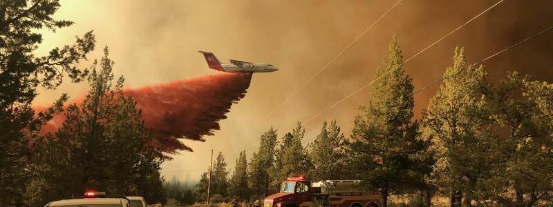 Waldbr?nde in den USA - Oregon - Foto: Uncredited/Oregon Department of Forestry via AP/dpa