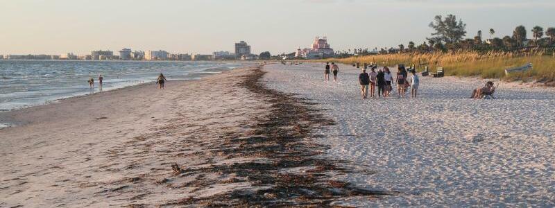 Florida - Foto: Arielle Bader/Tampa Bay Times via ZUMA Press/dpa