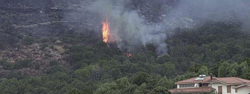 Flammen - Foto: Alessandro Tocco/LaPresse via AP/dpa