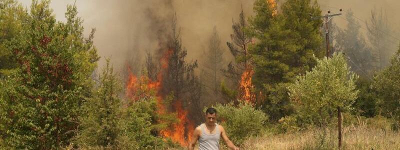 Waldbr?nde in Griechenland - Foto: Petros Karadjias/AP/dpa