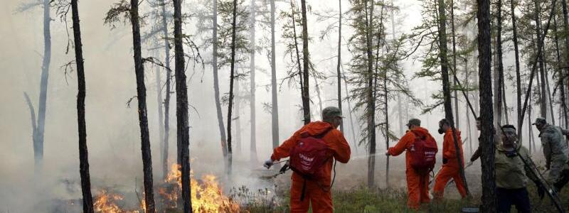 Waldbr?nde in Russland - Foto: Vasily Kuper/AP/dpa