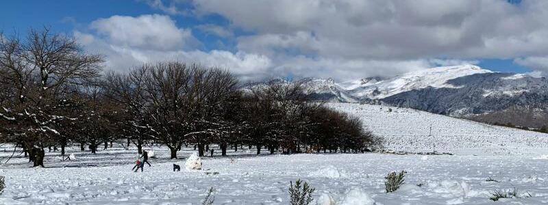 Schnee in S?dafrika - Foto: Kristin Paliza/dpa