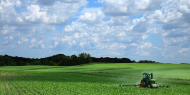 Landschaft - Foto: iStockphoto.com / skodonnell